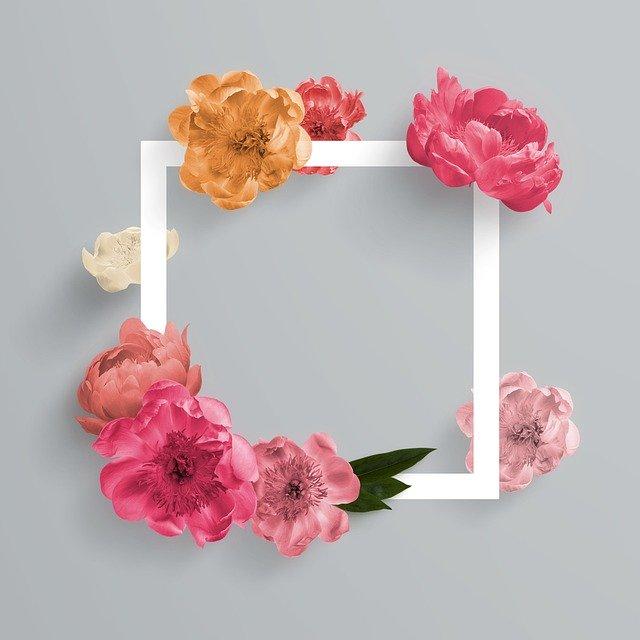 Frame, Blank, Roses