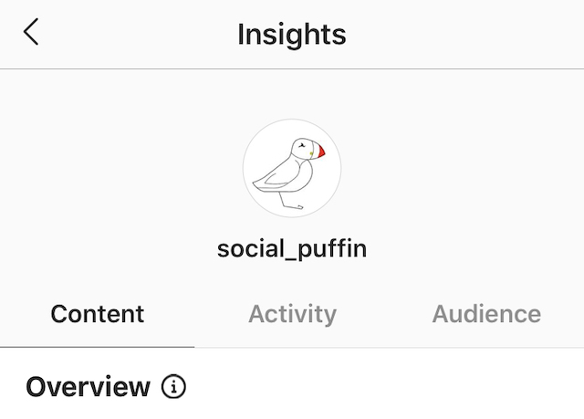Instagram Analytics, Overall Account Data